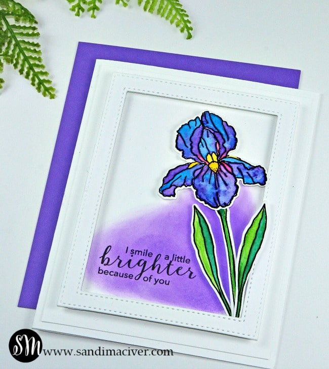 Easy Watercolor Techniques - Hero Arts Iris from SandiMacIver.com