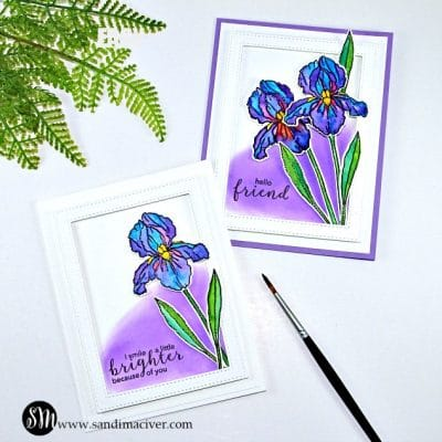 Easy Watercolor Techniques - Hero Arts Iris from Sandi MacIver.com