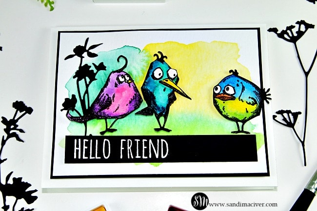 Tim Holtz Crazy Birds Water colored