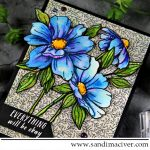 Simon Says Stamp Look for the Rainbows Watercolor Flowers