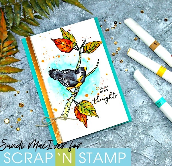 New Video - Painting with Nuvo Aqua Flow Pens and Concord & 9th Songbird Stamp Set