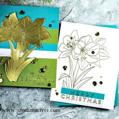NEW VIDEO – More Simple Christmas Cards – Mondo Amaryllis