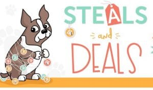 Simon Says Stamp Steals and Deals
