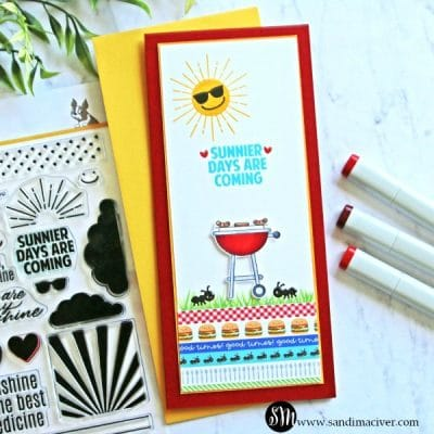 Simon Says Stamp Picnic Parade Card Kit