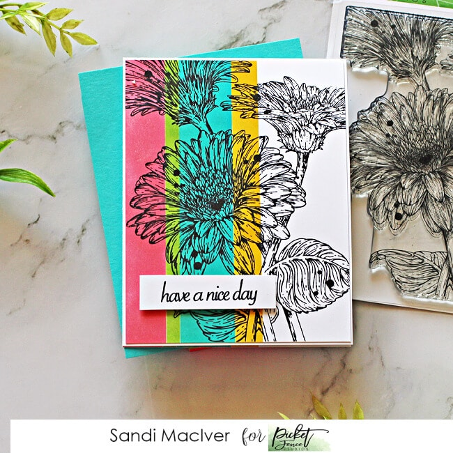 a hand made greeting card using the Picket Fence Studios Wild Daisies stamp set and the color blocking technique